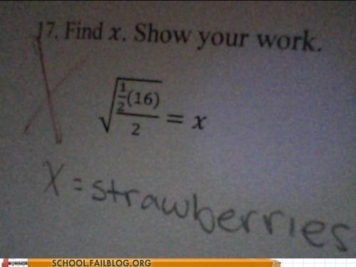 find x,makes sense,math,show your work,strawberries,test humor