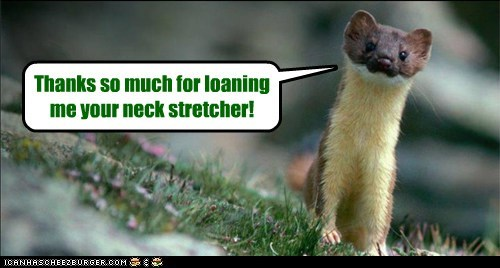 long neck stretch thank you weasel whats-up - 6543565824