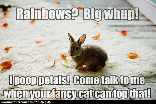 Rainbows? Big whup! I poop petals! Come talk to me when your fancy cat can top that!