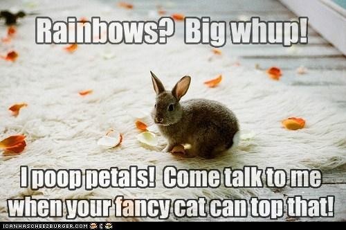 bunny not impressed Nyan Cat petals poop rainbows - 6543999488
