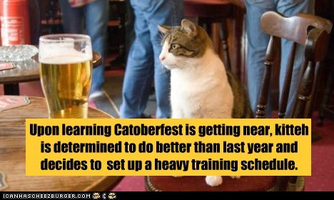 alcohol beer booze captions Cats drinking october oktoberfest training