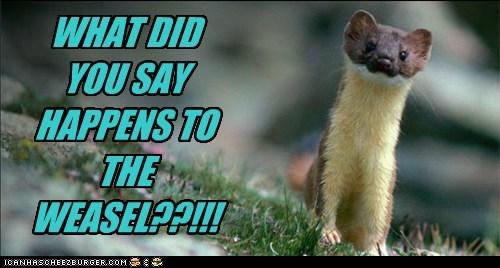 no nursery rhyme weasel - 6544221952