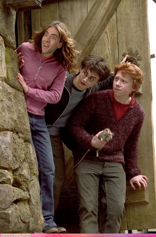 actor celeb Daniel Radcliffe funny Harry Potter nic cage nicolas cage rupert grint shoop - 6544353280