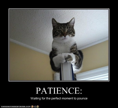 Patience Meme