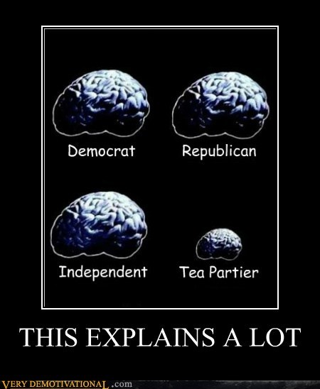 brain polotics size wtf