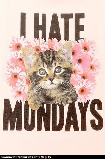 Cats cute flowers i hate mondays mondays shirts t shirts - 6544852224