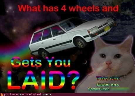1010 Ad Nyan Cat used car - 6544928512