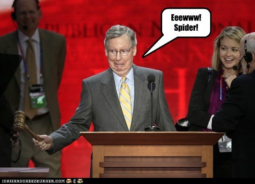 derp face gavel kill it mitch mcconnell rnc spider - 6545678336