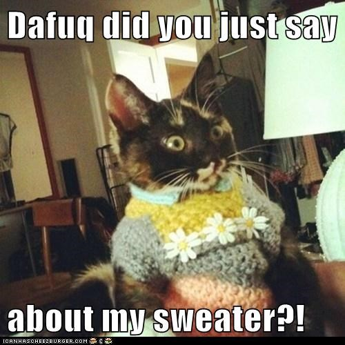 captions Cats dafuq fashion insult outfit rude sweater