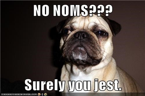 dogs,noms,pug,Surely You Jest,whiskers
