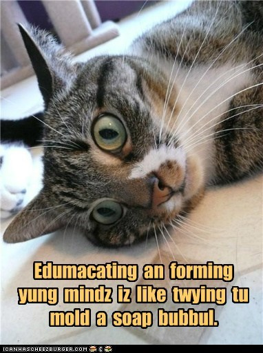 captions,Cats,children,kindergarten,learn,school,teach,teacher,young