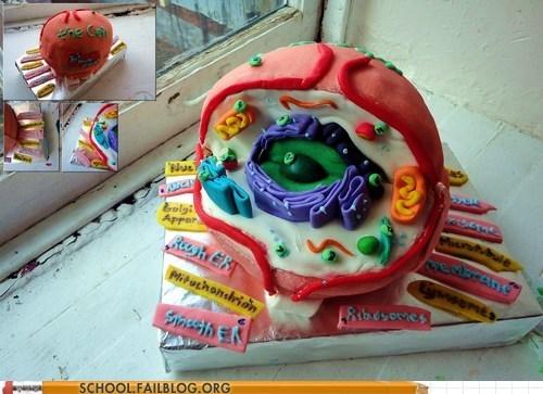 biology biology cell cake cakes deviant art nerdy noms - 6546656512
