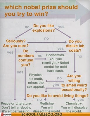 are you sure decisions explosions nobel prize - 6546867456