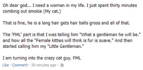 Cats Crazy Cat Guy forever alone - 6547182080