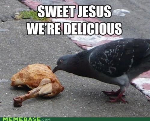 birds,delicious,meat