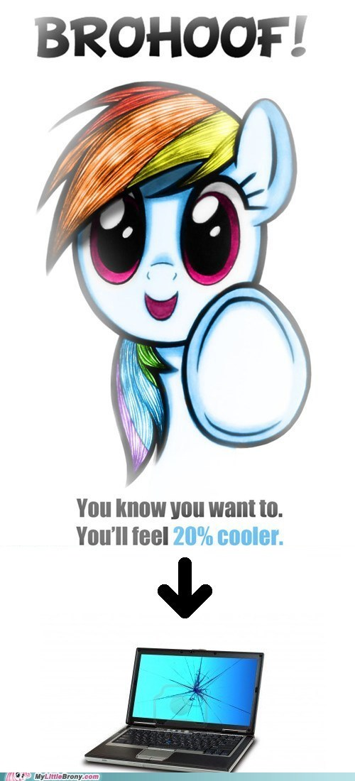 brohoof,broken computer,mod is sorry,rainbow dash
