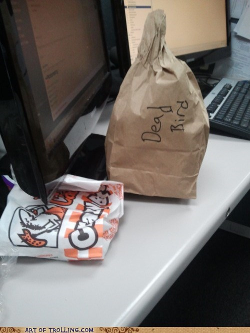 bag,dead bird,lunch,work
