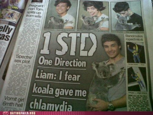 koalas,looks about right,one direction,STDs,tabloids