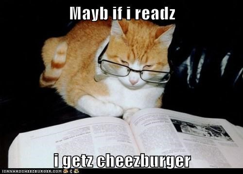 Cheezburger Image 6547452160