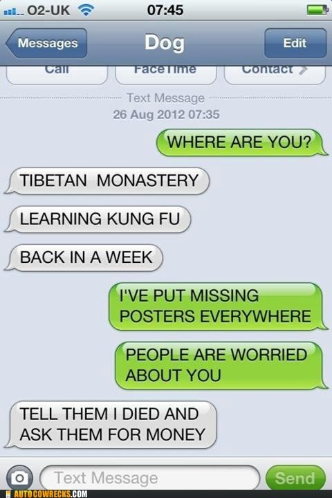 kung fu,missing posters,texts from dog,where are you