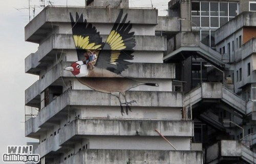 bird graffiti hacked irl Street Art - 6547546624