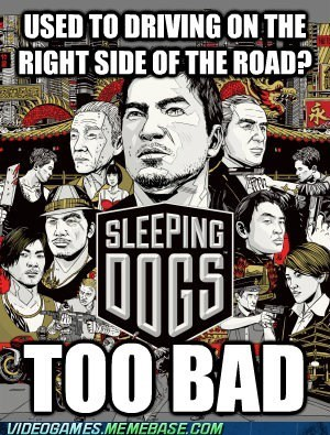 driving,right side of the road,sleeping dogs