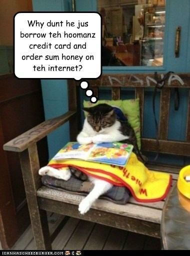 Why dunt he jus borrow teh hoomanz credit card and order sum honey on teh internet? Chech1965 280812