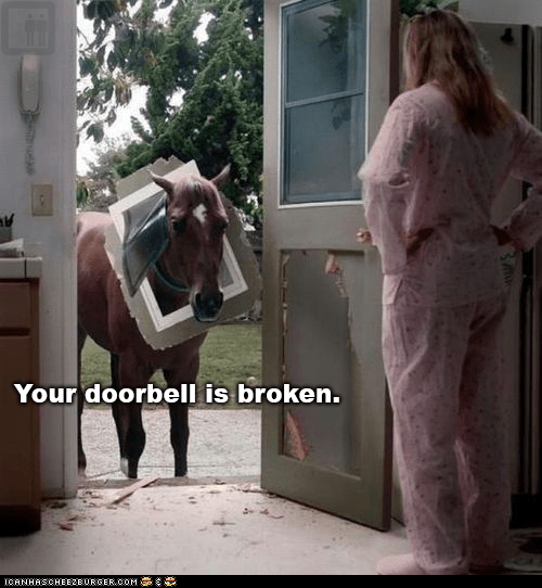 broken,captions,destruction,doorbells,doors,horses,wtf