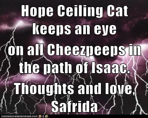 Hope Ceiling Cat keeps an eye on all Cheezpeeps in the path of Isaac.  Thoughts and love, Safrida