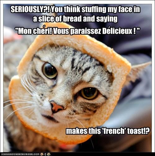 bread inbread Cats captions breakfast - 6548034048