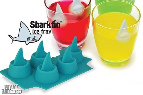 cute,design,ice cube,ice tray,shark