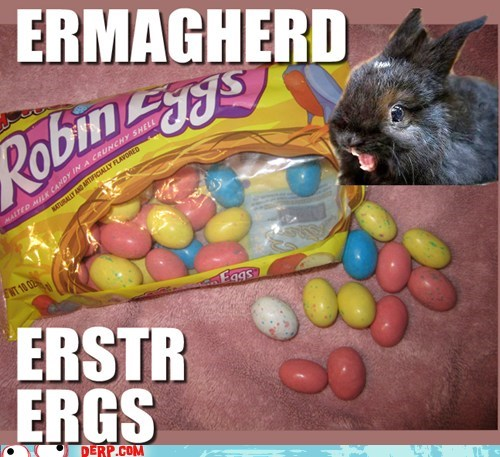 bunny candy easter Ermahgerd - 6548534528