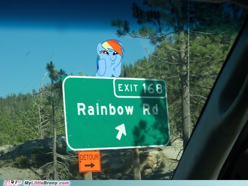 IRL rainbow dash rainbow road there are strawberries in there are strawberries in california twenty percent cooler - 6548985088