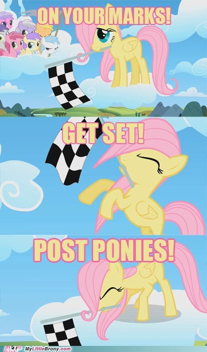 fluttershy gimme gimme gimme meta mod loves post ponies send me all the ponies - 6549126144
