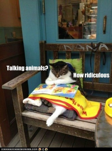 animals,book,captions,Cats,fantasy,read,ridiculous,Talking Animals