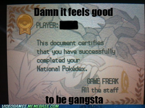 certificate gameplay gangsta pokedex - 6549709568