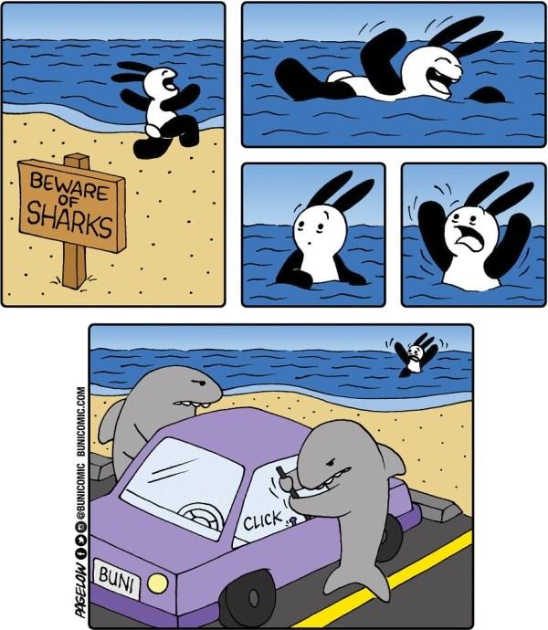 animal comics bunny animals web comics - 6550021