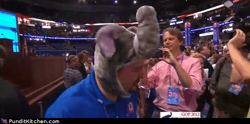 best part,elephant,hats,rnc,silly