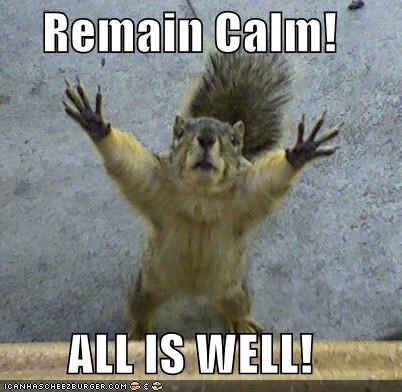 Remain Calm All Is Well Cheezburger Funny Memes Funny Pictures