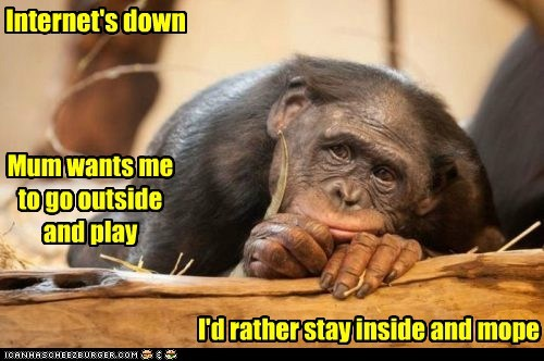 bored,captions,chimpanzee,down,go outside,internet,moping,play,strategy