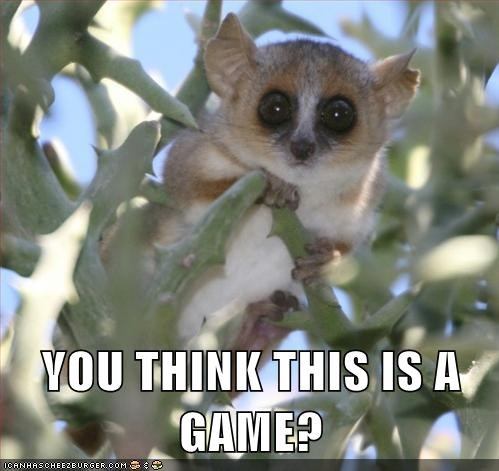 creepy,game,mouse lemur,serious,Staring,you think