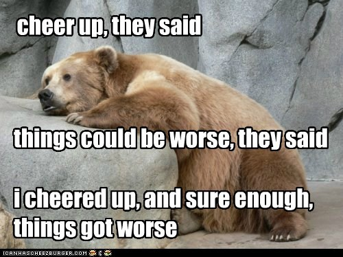 bear,cheer up,could be worse,depressed,Sad,They Said