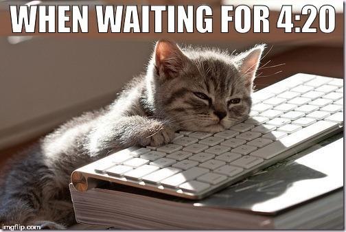 waiting funny memes Memes Cats cat memes - 6551557