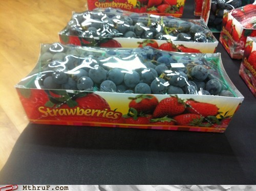 blueberries strawberries fruit monday thru friday g rated - 6552105472