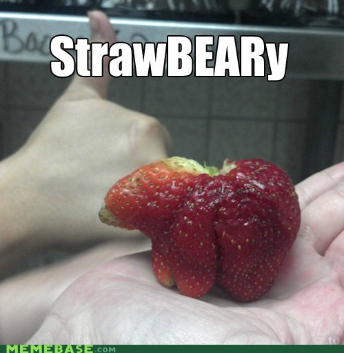 bear shapes strawberry - 6552187904