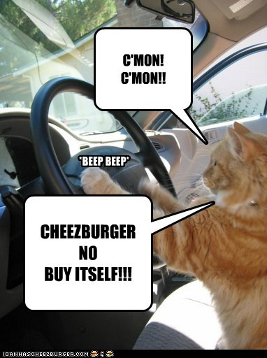 Cheezburger Image 6552202240