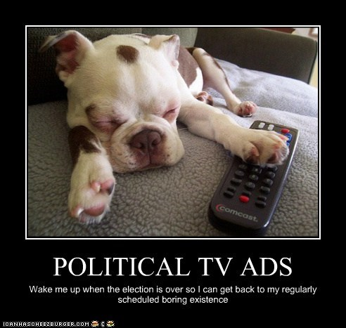 POLITICAL TV ADS Wake me up when the election is over so I can get back to my regularly scheduled boring existence