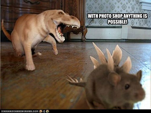 captions Cats dinosaurs edited miracle mouse photoshop possible - 6552733952