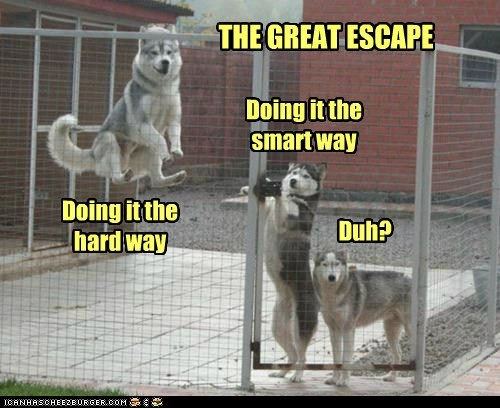 THE GREAT ESCAPE Doing it the hard way Doing it the smart way Duh?
