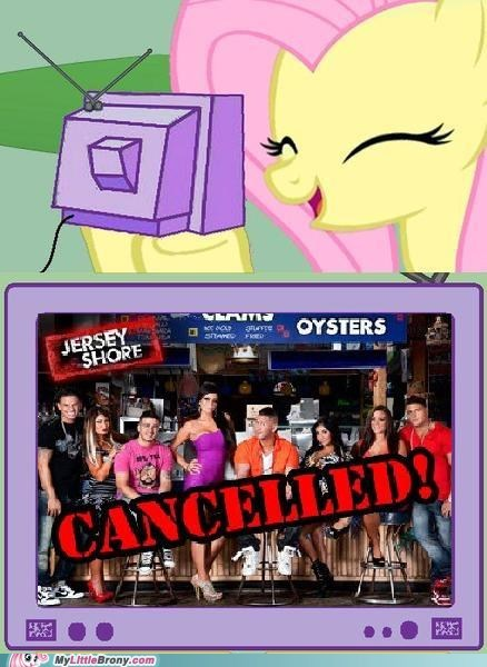 cancelled fluttershy jersey shore meme TV - 6552891392